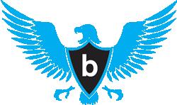 bizdetail-eagle11
